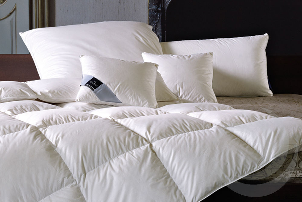 Billerbeck Kissen und Decken Sortiment