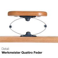 Werkmeister U 340 Quattro M2 elektrisches Tellerlattenrost